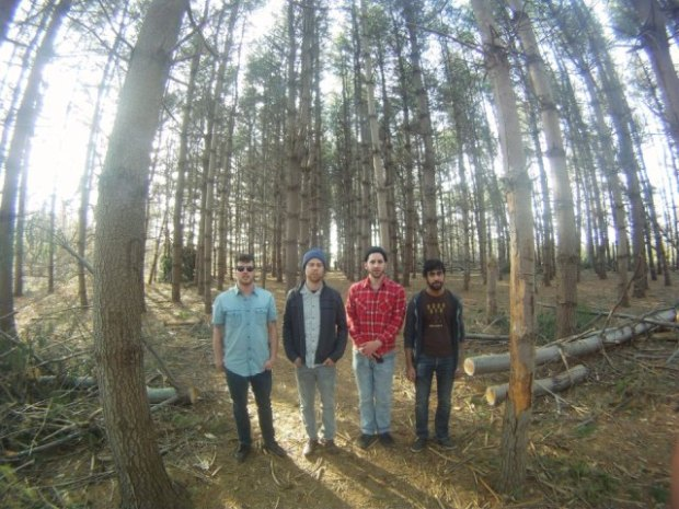 Vows Band Profile 2
