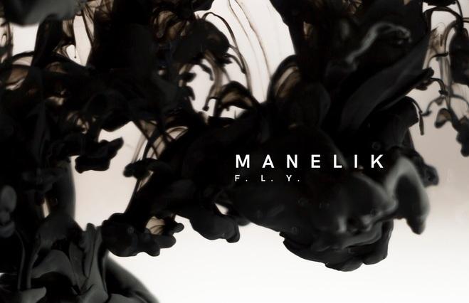Album artwork for F.L.Y. from Manelik