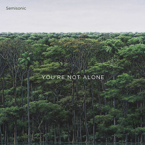 Semisonic You're Not Alone album cover