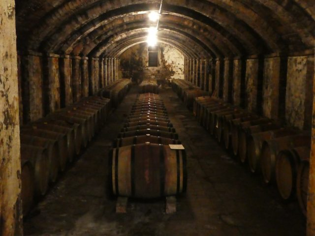 Wine Cellat at Castello Sonnino Winery in Italy