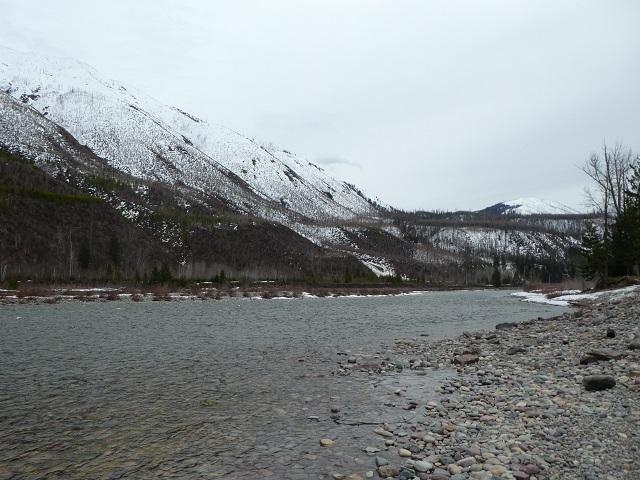 Flathead River just outside Glacier National park