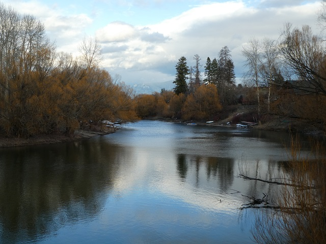 View of the Whitefish River
